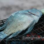 วิธีทำปลาเผาสูตรปลาเผาทำขายหารายได้เสริมทำที่บ้าน