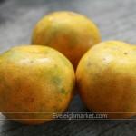 เรื่องน่ารู้ของส้มเขียวหวานวิธีการปลูกส้มเขียวหวานปลูกเป็นงานพิเศษ